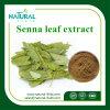 Pure Natural Folium Sennae P. E. Sennoside 60% UV