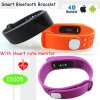 High Quality Activity Tracker Fitness Smart Bracelet with Heart Rate (ID105)