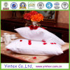 Factory Direct Selling Hotel Goose Down Pillow
