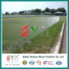 Hot Dipped Galvanized Chain Link Mesh for Wild Animals