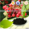 19-Natural Cranberry Anthocyanin with FDA Registered