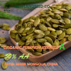 Health Benefits Shine Skin Pumpkin Seeds Kernel a/AA/AAA