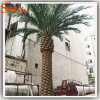 China Products Wholesale Customized Artificial Date Palm Tree Outdoor Palm Tree