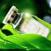 Silk Protein Magic Chitosan Polypeptide Anti-Wrinkle Silk & Coenzyme Perfect Youth Serum 24k Gold Serum