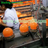 PVC Ball 8 Color Tampo Printing Machine