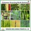 Traditional Chinese Herbology Equisetum Hiemale/ Common Scouring Rush Herb Extract with Organic Silica 7%
