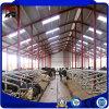 Sandwich Panel Metal Buildings Frame for Cattle Farm House