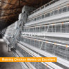 A Type 4 Tier Chicken Layer Battery Cage for Tanzania Poultry Farm