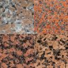 Cheap Maple Red Granite Slab for Decoration/Component/Countertop