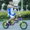 12 Inch High Quality Children Bike/Kids Bicycle Hot Sell