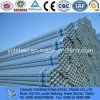 Hot Dipped Galvanized Pipe and Tube for Greenhouse