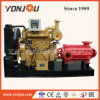 Agriculture Irrigation Diesel Pump