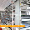 Broiler poultry farm equipment with poultry automatic feeding system