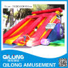 Large Style Funny Inflatable Slide (QL-D071)