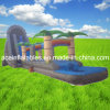Inflatable Water Slide N Slip Combo