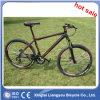 Aluminum Alloy Mountain Racing Bike/ Sports City Bike