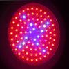 LED Grow Light Gt-102