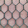 PVC Coated Hot Dipped Galvanized Hexagonal Wire Mesh (Factory & Exporter)