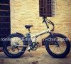 Exclu 24in X4 Fat Tyre 250W Folding Electric Bike/E Fat Bicycle/500W  Fat Foldable Pedelec/750W Fat Electric Snow Bike/Fat E Bicycle En15194