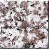 G439 White Coarse Grain Puning Granite Tile & Slab