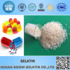 Hot Selling Gelatin for Food/Industrial/Medical Application