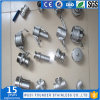 Manufacture Stainless Steel SS304/SS316 Pipe Fitting
