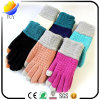 Thickened Wool Exquisite Touch Gloves