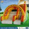 Hot Sale Inflatable Water Slide /Outdoor Slide for Amusement Park
