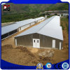 Metal Buildings Steel Structure Poultry Farming House for Chicken