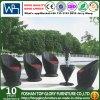 Outdoor Rattan Dining Set Patio Chair Garden Table Garden Furniture (TG-871)