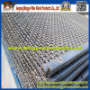 SGS Factory! L Crimped Mesh for Hot Sale