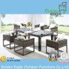 Hot Dining PE Wicker Patio Furniture (FP0189)