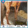 Cow Horse Matting/Acid Resistant Cow Rubber Mat/Horse Rubber Mat