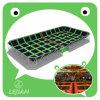 CE Green Pattern Trampoline (TP1203-7)