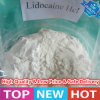 High Purity Anesthetic Raw Powder Lidocaine Hydrochloride (Lidocaine HCl)