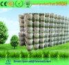 Waterproof Common Type Ceramic Tile Adhesive