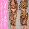 Leopard Print Long Sleeves Skirt Set
