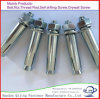 All Kinds of Bolt/Expansion Bolt/Anchor Bolt/Eye Bolts Made in China