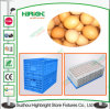 Folding Plastic Transport Egg Crate with Hole