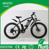 36V/48V 750W Fat Eco Electric Bike with Removable Battery 500W 16ah
