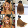 Brazilian Virgin Hair Ombre Color 10 Inch Ot1b-30 Straight Bliss