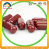 Hot Sale Ganoderma Lucidum Spore Powder Capsule