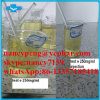 Testosterone Enanthate Steroids Injections Testosterone Enanthate 250mg/Ml