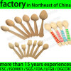 Wholesale Wooden Disposable Ice Cream Spoon, Birch Wood Tasting Spoon