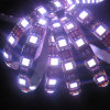 DC12V / 24V SMD5050 6000k White LED Light Strip