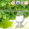 Jiaogulan Gynostemma Extract/ 80% 98% Gypenoside
