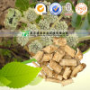 High Quality Herb Medicine Coasiai Giehnia Root