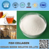 Cosmetic Grade Fish Collagen for Whitening, Repair, Moisturizing
