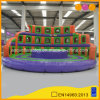 Round Inflatable Arena Sports Game Inflatable Gladiator Arena for Adult (AQ1754)