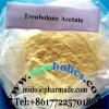 GMP Anabolic Steroids Hormone Powder Trenbolone Acetate/Tren Acetate
